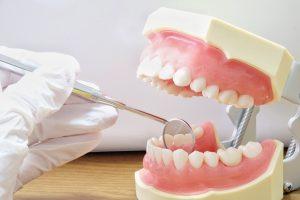 練馬区武蔵関みたに歯科医院、入れ歯が合わない方へ