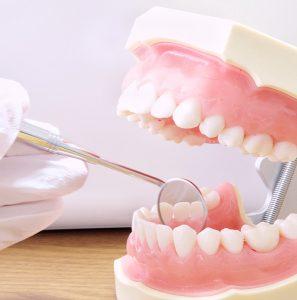 練馬区武蔵関、みたに歯科医院の予防歯科